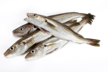 Buy Whiting from Fish Co Midlands