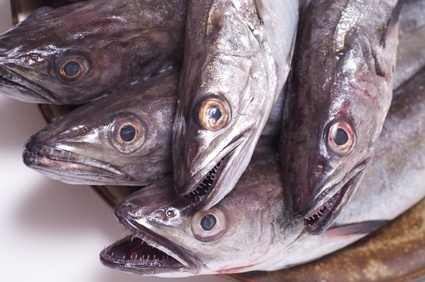 Buy Hake from Fish Co Midlands